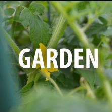 NCCC_garden